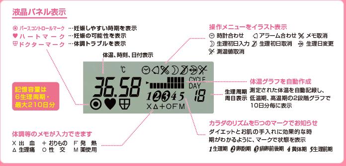 基礎 体温計