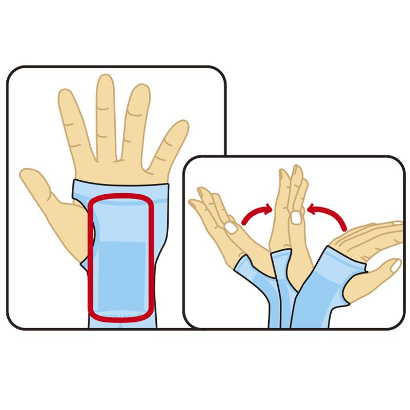 手くび特長1